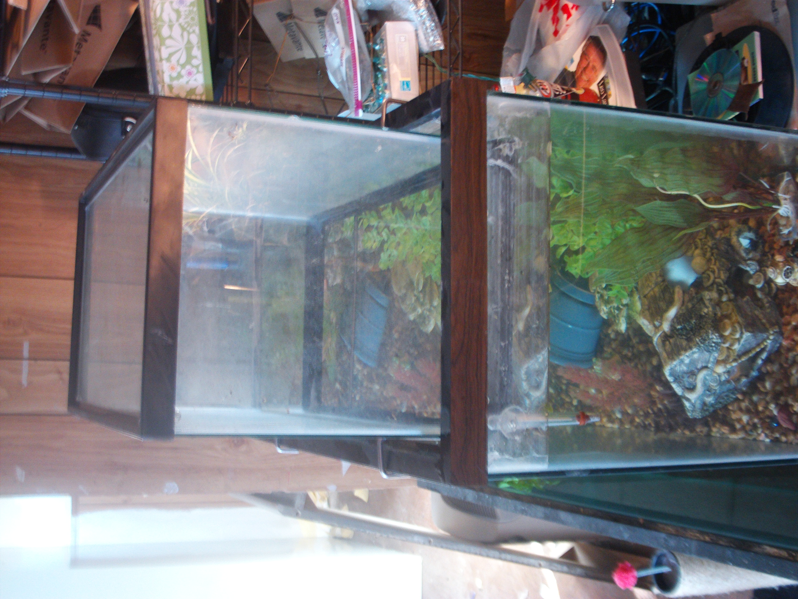 Upside down tank creuzer for Inverted fish tank